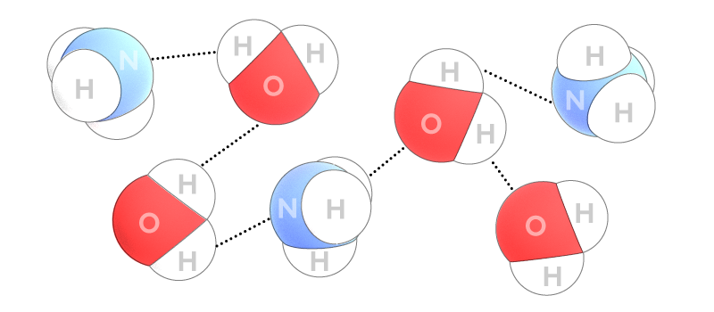 ammonia_fountain_hydrogen_bonds