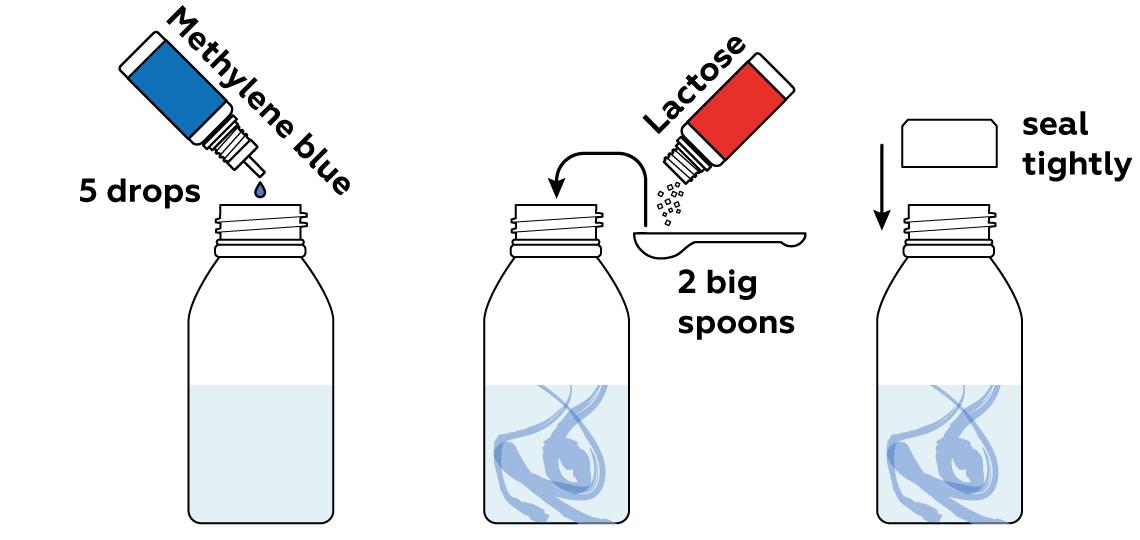 brics-blue-bottle_blue-bottle_en_iks-s-02