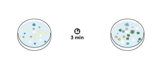 chemgarden-v2_jellyfish-v2_en_iks-s-03