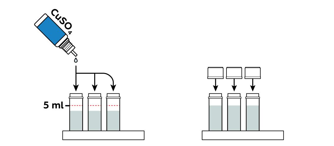 copper-v3_copper-complexes_fr_iks-s-03