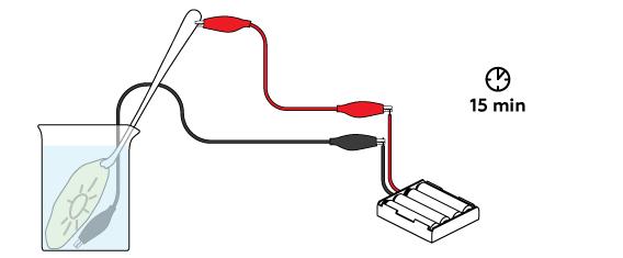 electroplating-v2_spoon-etching_en_iks-08