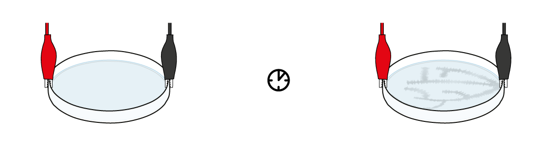 tinlead-v2_dendrite_en_iks-s-05