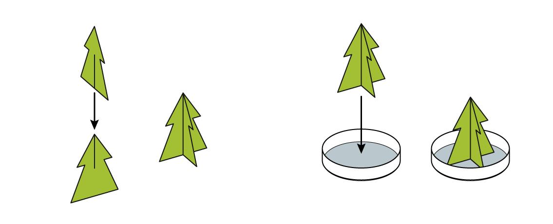 xmas-v2_xmas-tree_en_iks-s_04
