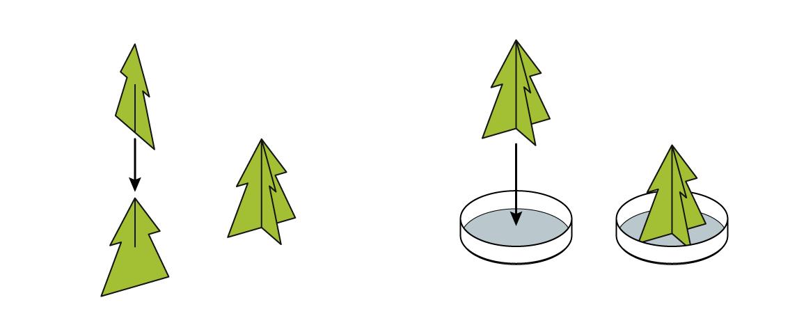 xmas-v2_xmas-tree_fr_iks-s-04