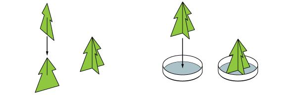 xmas_xmas_tree_en_iks-04